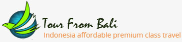 Tour From Bali Logo