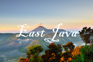 east java tour package