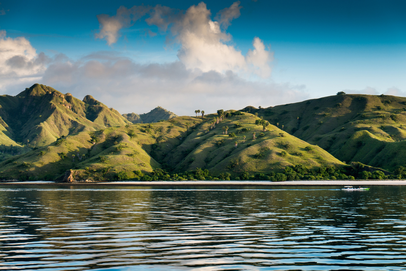 Coastal landscape of island Komodo National Park, UNESCO World Heritage Site, Indonesia, Southeast Asia