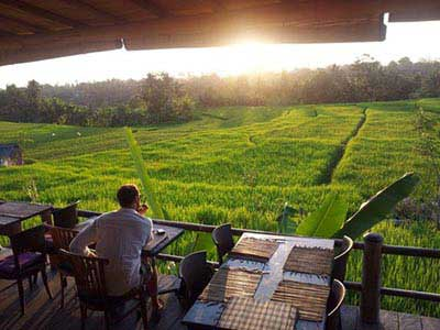 source: rawfoodbali