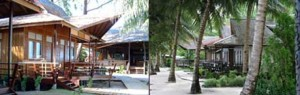 Derawan Dive Resort - 2