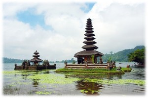 5 Days 4 Nights Bali Dolphin Tour-12
