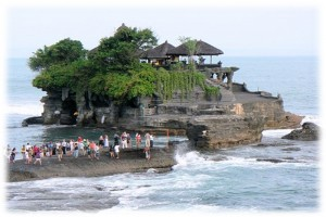 5 Days 4 Nights Bali Dolphin Tour-6
